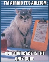 Doctor LOL Cat Says I'm Afraid Its Ableism and Advocacy Is the Only Cure